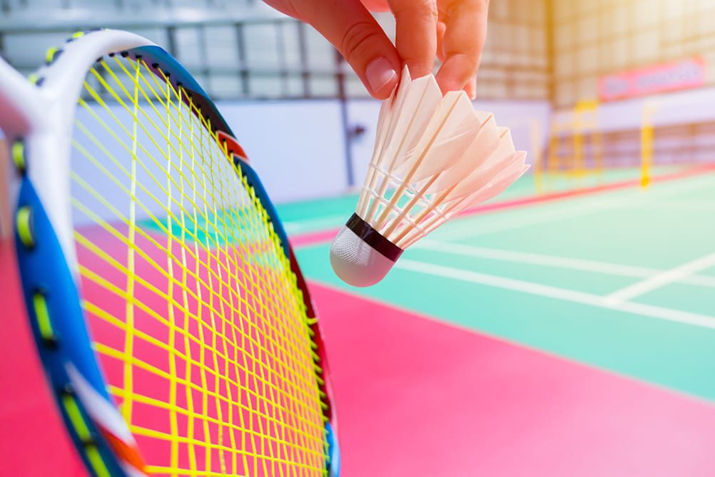 Badminton Reviews and Nets