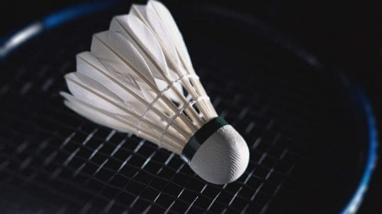 Top 6 Feather Badminton Shuttlecocks