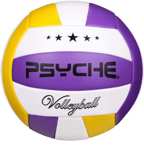 Wisdom_Leaves_Soft_Touch_Volleyball