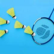 Philonext 12-Pack Badminton Shuttlecocks set