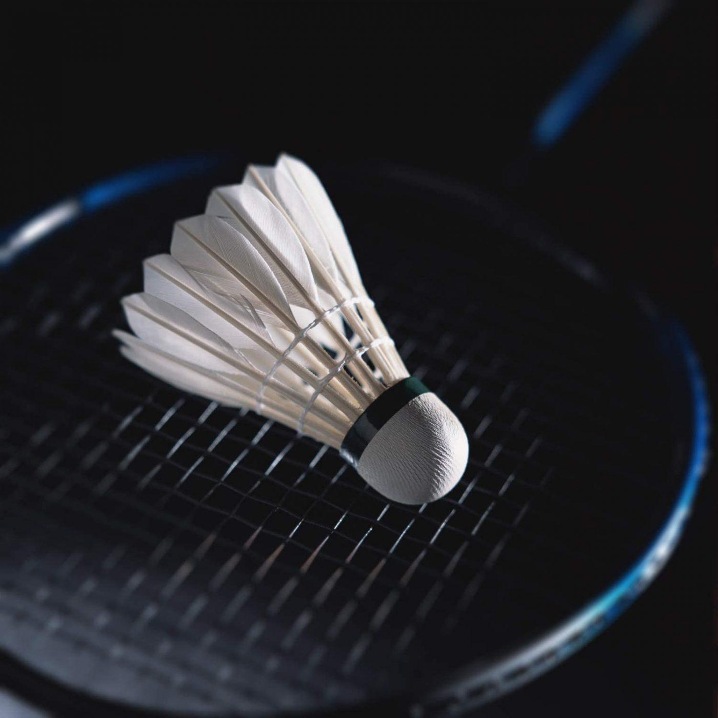 Top 6 Feather Badminton Shuttlecocks